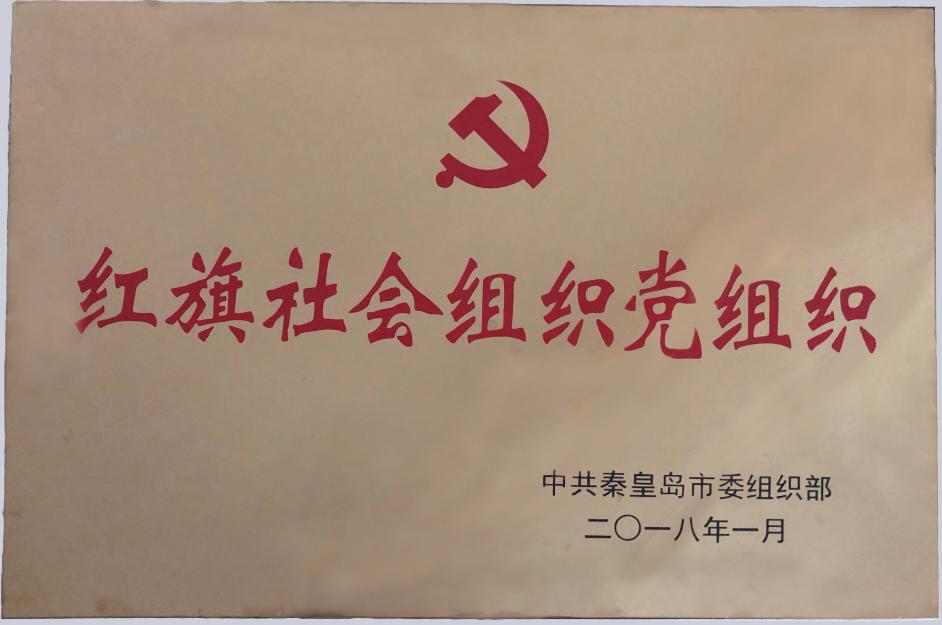 红旗社会组织党组织